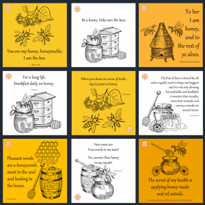 DFY Honey Quotes – Instagram – 30 Pack